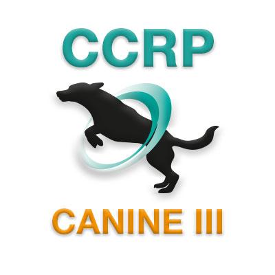 CCRP Course 3