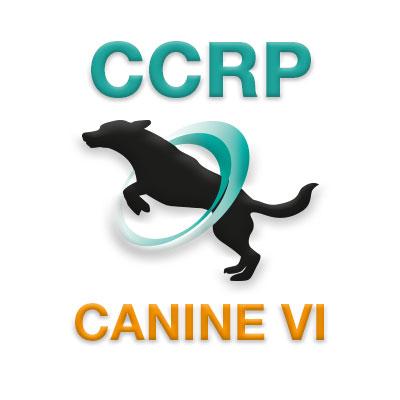 CCRP Course 6