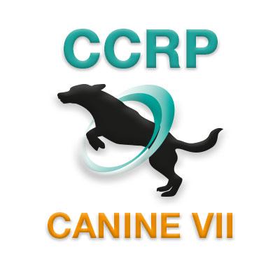 CCRP Course 7