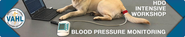 HDO Blood Pressure Monitoring Intensive Workshop
