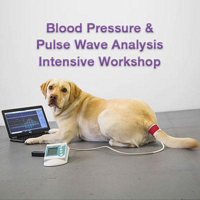 HDO Intensive Workshop