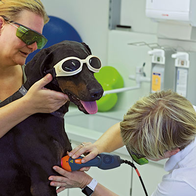 Laser Therapy Seminar by VAHL