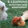 NCM E-Learning Course