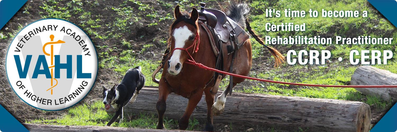 vahl-canine-equine-starter