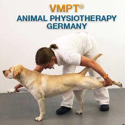 VMPT Germany