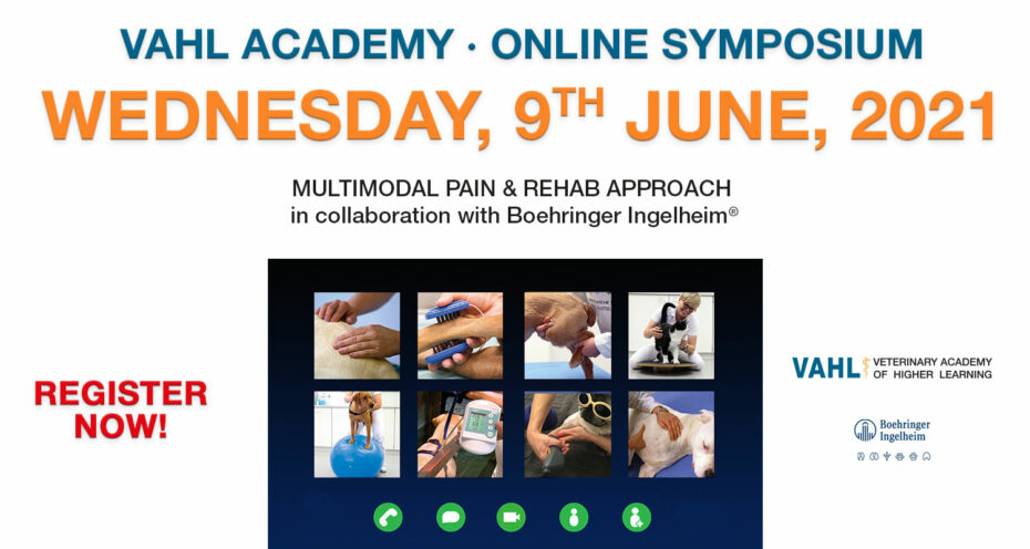 VAHL ONLINE SYMPOSIUM - Pain & Rehab