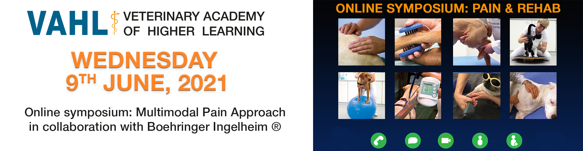 VAHL Online Symposium Pain & Rehab